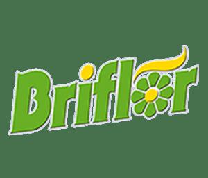 logo briflor