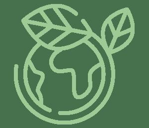 innovacion y sostenibilidad